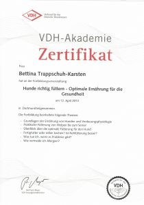 VDH_Akademie